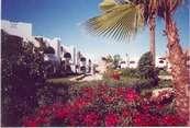 Отель Coral Bay Шарм-Эль-Шейх
