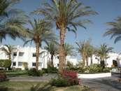 Отель Sonesta Club Шарм-Эль-Шейх