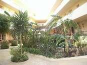 Отель Sultan Beach Хургада